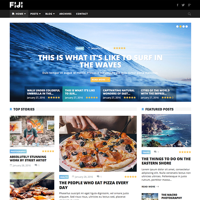 fiji wordpress theme