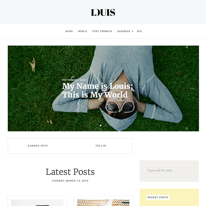 louis wordpress theme
