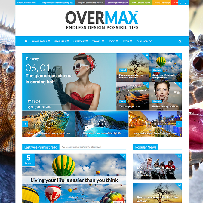 overmax wordpress theme