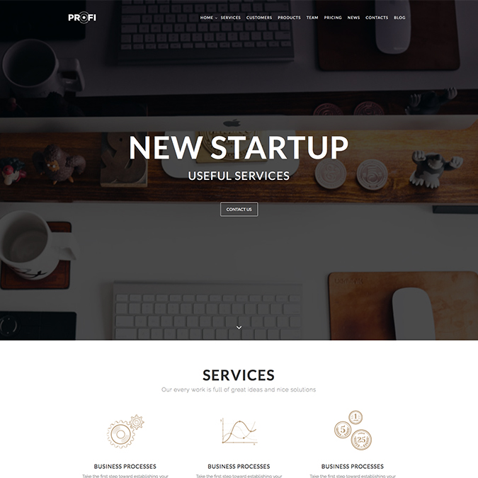 profi wordpress theme