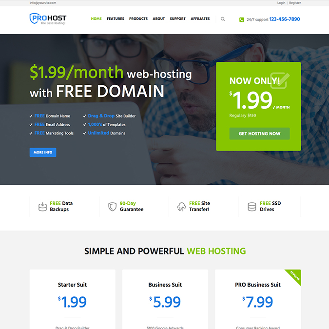 prohost wordpress theme