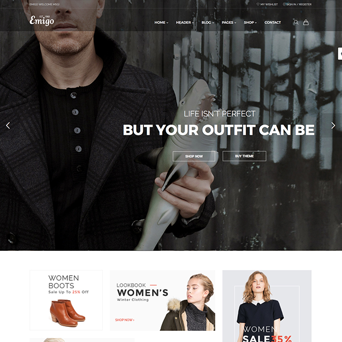 Emigo Ecommerce WordPress Theme