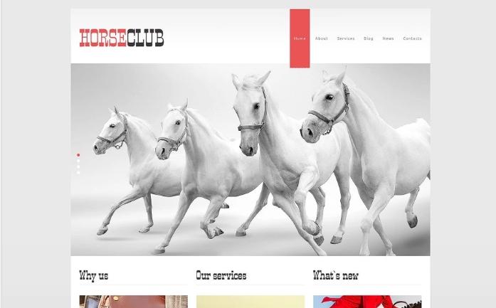 HorseClub