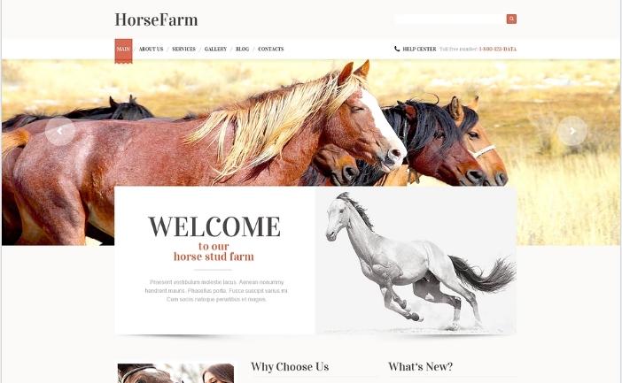HorseFarms
