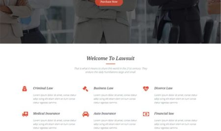 60+ Responsive Lawyer WordPress Themes for legal attorney