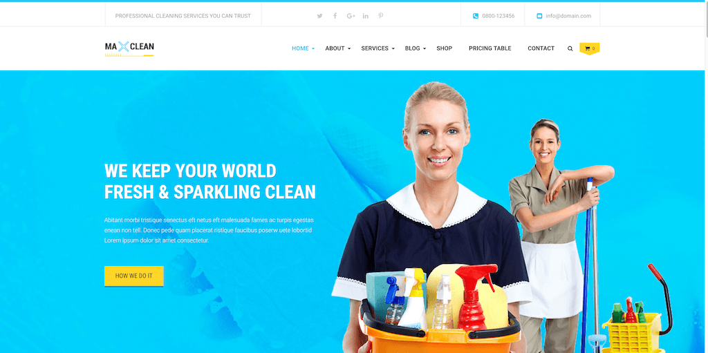 Max Cleaners