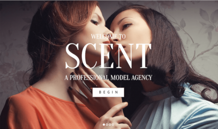 15+ Amazing Model Agency WordPress Themes 2018