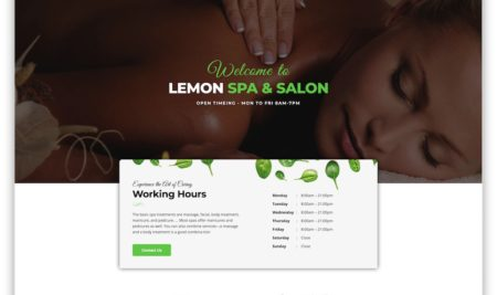 10+ WordPress Spa & Massage Salon Themes 2019